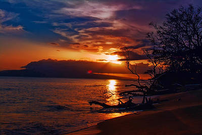 Lahaina Sunset Art Print by Camille Lopez