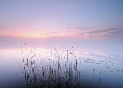 Pastel Sunset Photograph - Lake by