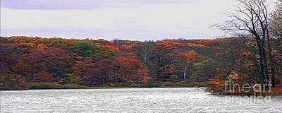Photograph - Lake At Hinckley Reservation 2 - Panorama by Gena Weiser