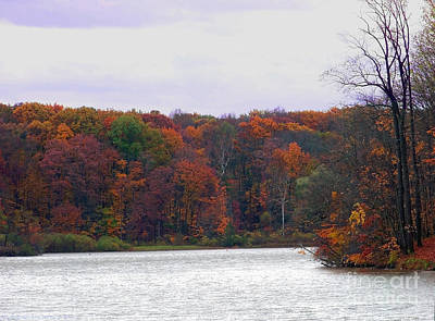 Photograph - Lake At Hinckley Reservation 2 by Gena Weiser