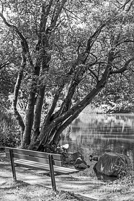 Photograph - Lake Bench In Black And White by Kate Brown