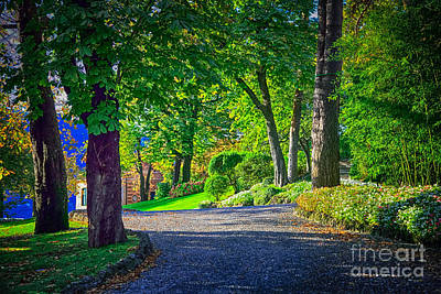 Lake Como Path Art Print