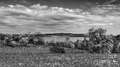 Photograph - Lake Constance I by Bernd Laeschke