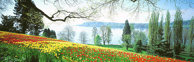 Lake Constance Photograph - Lake Constance, Insel Mainau, Germany by Panoramic Images