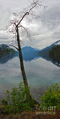 Photograph - Lake Crescent - Washington - 01 by Gregory Dyer