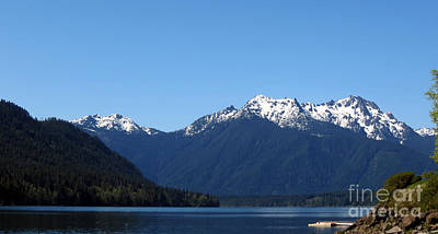 Lake Cushman - Olympic National Forest Art Print by Gayle Swigart