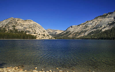 Photograph - Lake Ellery Yosemite by David Millenheft