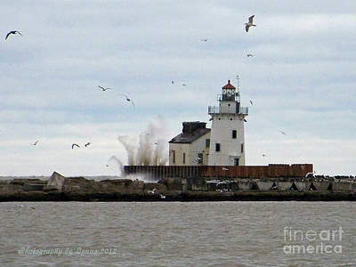 Photograph - Lake Erie And Sandy by Gena Weiser