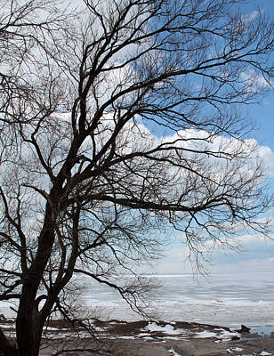 Lake Erie In March Art Print