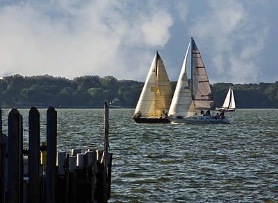 Photograph - Lake Erie Sailing 2 by Shawna Rowe