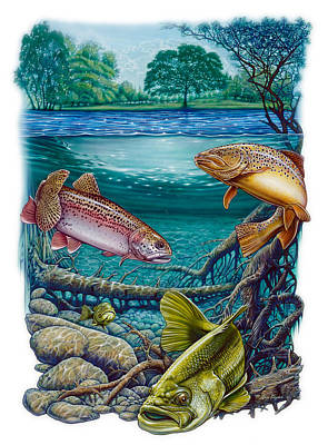 Trout Painting - Lake Fish by Larry Taugher