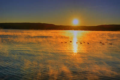 Photograph - Lake George Gold by Emily Stauring