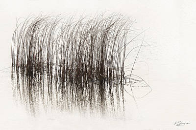Lake Grasses Art Print