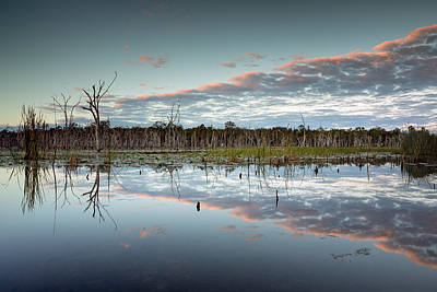 Lake Gregory Reflections 3 Art Print by Brad Grove
