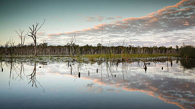 Lake Gregory Reflections 4 Art Print by Brad Grove