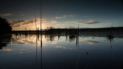 Photograph - Lake Gregory Reflections 5 by Brad Grove
