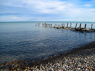 Lake Huron Pilings Art Print by Mary Bedy