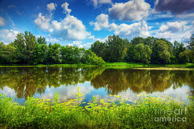 Leaf Photograph - Lake In A Summer Forest by Michal Bednarek