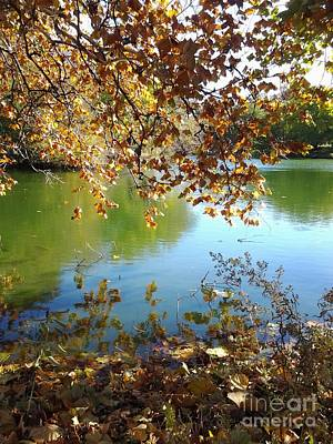 Lake In Early Fall Art Print