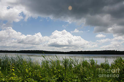 Photograph - Lake In Tamarac by Cassie Marie Photography
