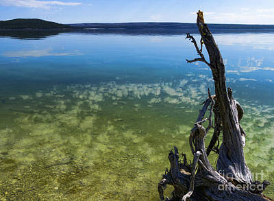 Go For Gold Rights Managed Images - Lake in Yellowstone Royalty-Free Image by Brenda Kean