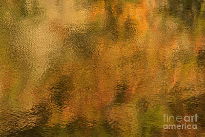 Photograph - Lake Macbride-1 by Chuck Smith