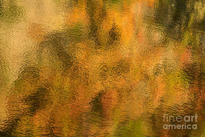 Photograph - Lake Macbride-3 by Chuck Smith