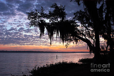 Photograph - Lake Manatee Sunrise by Jane Axman