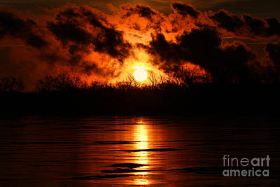 Photograph - Fire In The Sky by Elizabeth Winter
