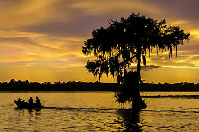 Swampland Photograph - Lake Martin Sunset by Janet Fikar