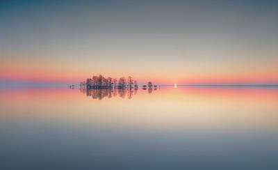 Cypress Photograph - Lake Mattamuskeet Memory by Liyun Yu