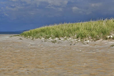 Photograph - Lake Michigan Beach by John Crothers