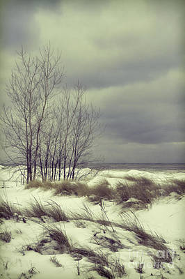 Photograph - Lake Michigan Shore In Winter by Jill Battaglia