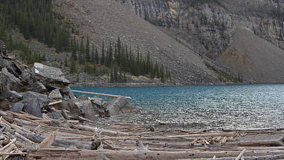 Photograph - Lake Moraine With Driftwood by Cheryl Miller