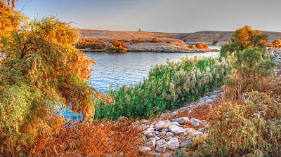 Photograph - Lake Nasser Sunset by Nigel Fletcher-Jones