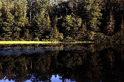 Photograph - Lake O Law by George Cousins