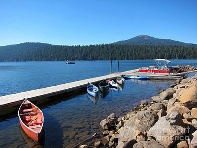 Photograph - Lake Of The Woods Boat Harbor by Debra Thompson