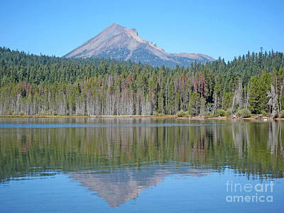 Photograph - Lake Of The Woods Reflections by Debra Thompson