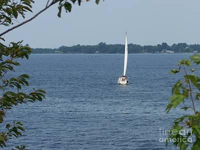 Lake Ontario Sailing Art Print by Kevin Croitz