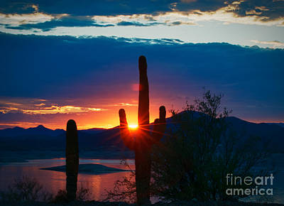 Photograph - Lake Pleasant Arizona by Richard Mason
