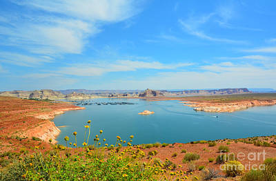 Photograph - Lake Powell Vista With Flowers by Debra Thompson