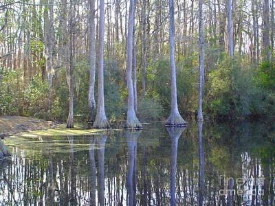 Photograph - Lake Reflection by Lew Davis
