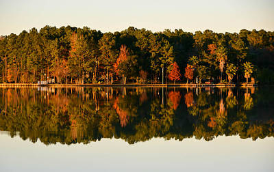 Photograph - Lake Reflection  by Shey Stitt