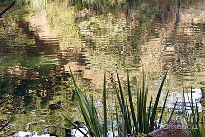 Art Print featuring the photograph Lake Reflections by Kate Brown