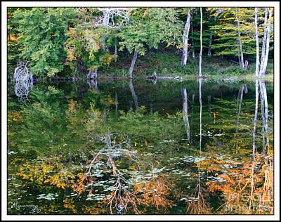Photograph - Lake Reflections by Mariarosa Rockefeller