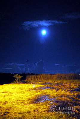Photograph - Moonrise Over Rochelle - Portrait by George D Gordon III