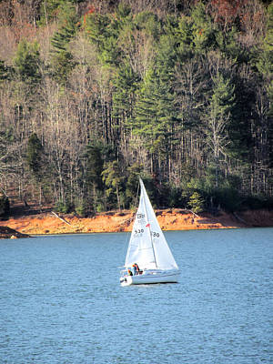 Photograph - Lake Sailing by Michael Creamer