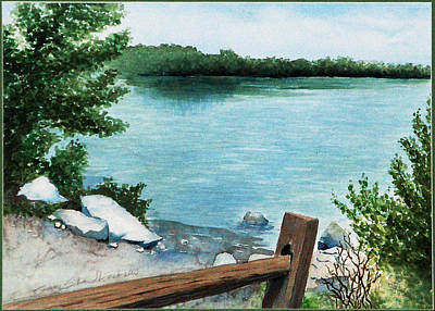 Painting - Lake Seminole by Ginny Schmidt