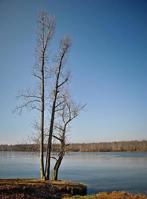 Photograph - Lake Sentinel by Greg Jackson