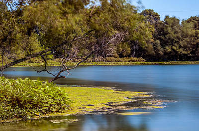 Photograph - Lake Serenity by Gene Sherrill
